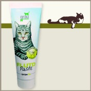 Cat Care Plus Paste FLUTD 100 g